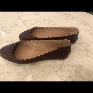 Brown Chloe Lauren scallop ballet flats 7.5
